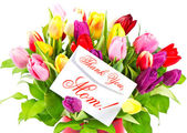 Colorful bouquet of fresh tulips — Stock Photo