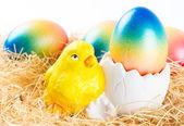 Wielkanocny kurczak i kolorowe pisanki — Zdjęcie stockowe