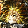 Golden venetian carnival mask with feathers — Stock Photo