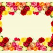 Roses. colorful flowers frame — 图库照片
