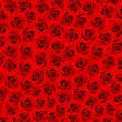 Many red roses. flower field — Stockfoto #13428568