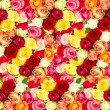 Roses. colorful flowers frame — Stock Photo #13428802