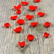 Petals of red rose on wooden — Stock Photo