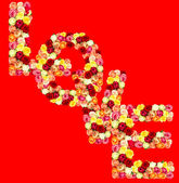 LOVE, roses flower letter — Stock Photo