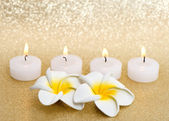 Frangipani spa flowers with candles over shiny golden background — Stock Photo