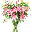 Bouquet of lily flowers — Stock Photo