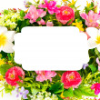 Decorative colorful flower arrangement on white background — Stock Photo