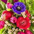 Colorful flowers bouquet — Stock Photo #13511891