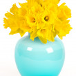 Daffodils in a blue vase — Stock Photo #13512257