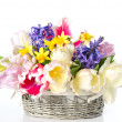 Tulips, narcissus and hyacinth. colorful spring flowers — Stock Photo