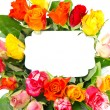Stock Photo: Beautiful multicolored roses bouquet