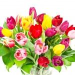 boeket van kleurrijke bloemen — Stockfoto #13518996