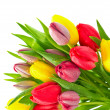 Colorful bouquet of fresh spring tulip flowers with water drops — Stock Photo #13519191
