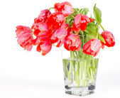 Red tulip flowers in a glass vase — Stock Photo