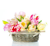 Colorful spring tulip flowers in basket — Stock Photo