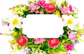 Decorative colorful flower arrangement on white background — Stock Photo