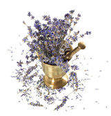Vintage mortar with dry lavender flowers — Stock Photo