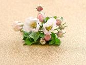 Apple tree blooms on golden background — Stockfoto