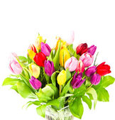 Bouquet of fresh colorful tulips flowers — Stock Photo