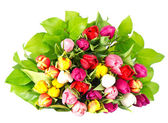Bouquet of fresh spring tulip flowers — Stock Photo