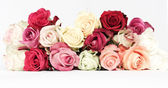 Roses bouquet. vintage style — Stock Photo