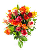 Assorted multicolored roses — Stock Photo