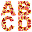 ABCD, roses flower alphabet — Stock Photo