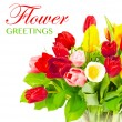 Colorful bouquet of fresh spring tulip flowers - Stock Photo