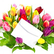 colorful bouquet of fresh tulips with a blank card — Stock Photo