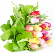 Colorful fresh tulip flowers - Stock Photo