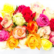 Colorful roses, beautiful flower bouquet on white — Stock Photo