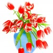 Red tulip flowers on white - Stock Photo