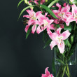 Lily flowers bouquet — Stock Photo