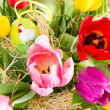 Fresh spring tulips with easter eggs — Stock Photo