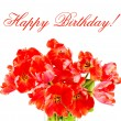 Royalty-Free Stock Photo: Red tulips. happy birthday! card concept