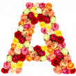 A, roses flower alphabet — Stock Photo