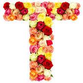 T, roses flower alphabet — Stock Photo