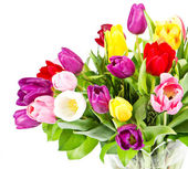 Colorful bouquet of fresh tulip flowers — Stock Photo