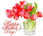 Vazoda kırmızı lale çiçek — Stok fotoğraf
