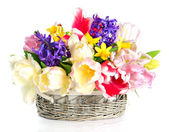 Tulips, narcissus and hyacinth. colorful spring flowers — Foto Stock