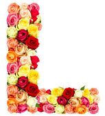 L, roses flower alphabet — Stock Photo