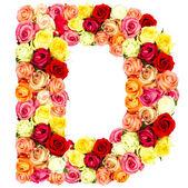 R, roses flower alphabet — Stock Photo