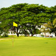 Golf course. tropic landscape — Stock Photo