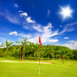 Golf field with palm trees over blue cloudy sky — Stock Photo