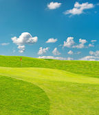 Golf field. beautiful green landscape with blue sky — Stock fotografie