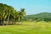 Golfplatz. palmen-landschaft — Stockfoto