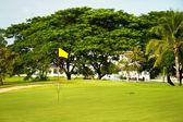 Golf course. tropic landscape — Stock Photo
