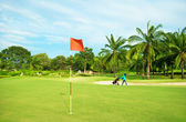 Golf Course. Landscape with Palms — Stock Photo