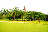 Golf Course. Landscape — Foto de Stock