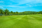 Golf Course, Lansdcape with Palms — Stock Photo